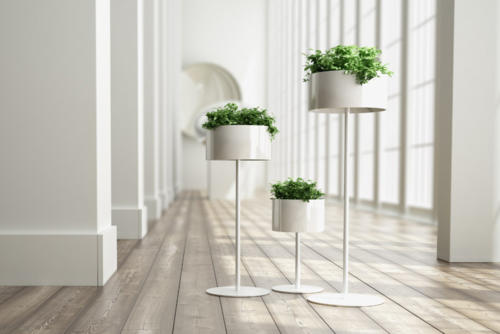 jardiniere-plante-support