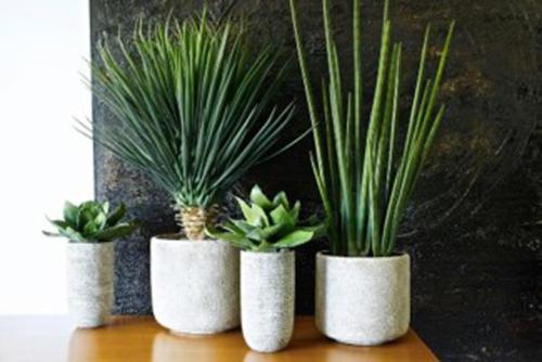 tanaman-plantes-artificielles